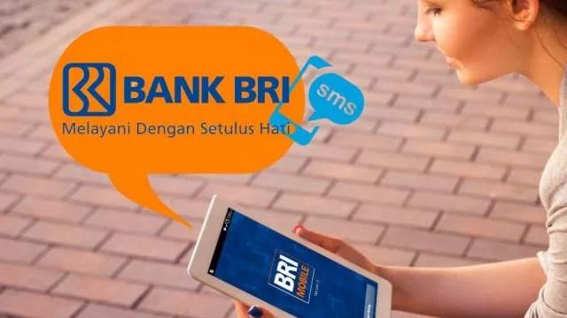 pin sms banking bri terblokir