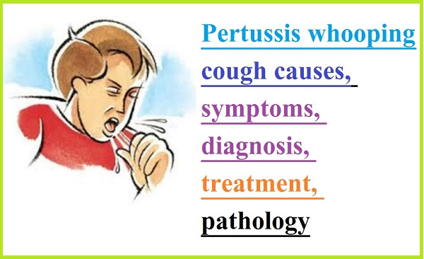 Pertussis whooping cough causes, symptoms, diagnosis, treatment, pathology