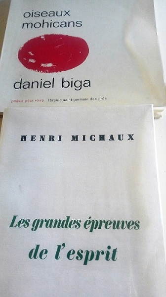 daniel-biga-oiseaux-mohicans-originale