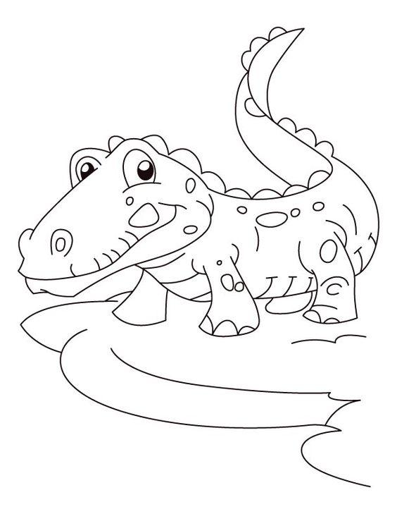 Tranh tô màu con cá sấu đơn giản