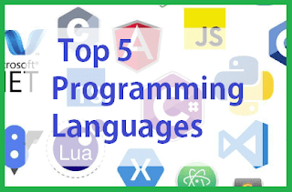 5 Top Programming Languages
