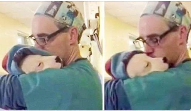 Испуганный щенок не мог остановиться, он плакал и плакал, пока доктор не взял его на ручки.