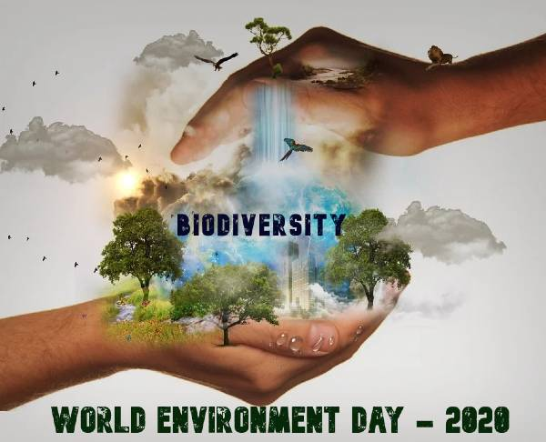 World Environment Day 2020, Friday, 5 June: Celebrating Ideas, History and Theme