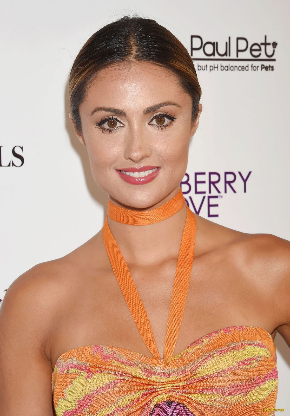 jivebunnys female celebrity picture gallery katie cleary