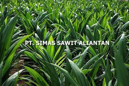 Lowongan PT. Simas Sawit Aliantan Pekanbaru Februari 2019