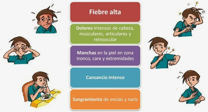 Signos-síntomas-de-dengue