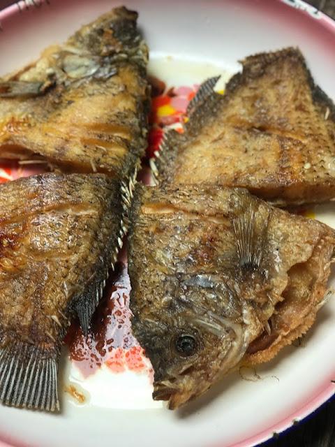 Ikan gurame goreng ala emak