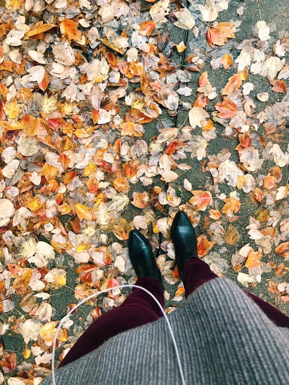 Fall Playlist | Organized Mess