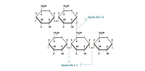 Pibid E O Ensino De Química Amido