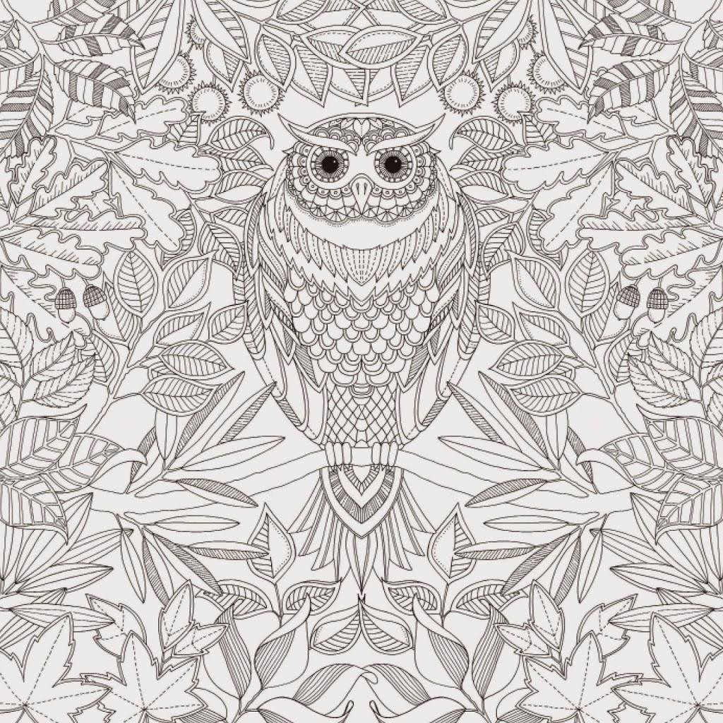 Secret Garden Macys 957 Game Of Thrones Coloring Book Target
