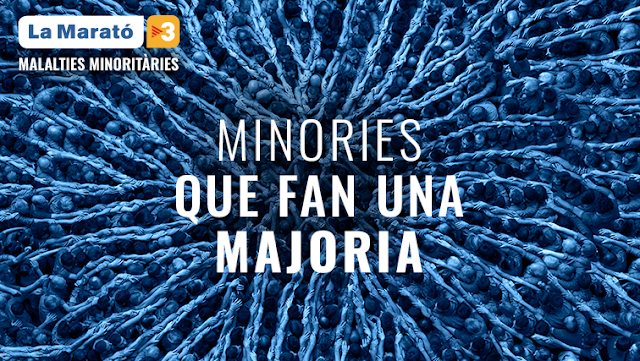 Imatge de La Marató de TV3