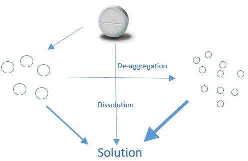 Dissolution studies