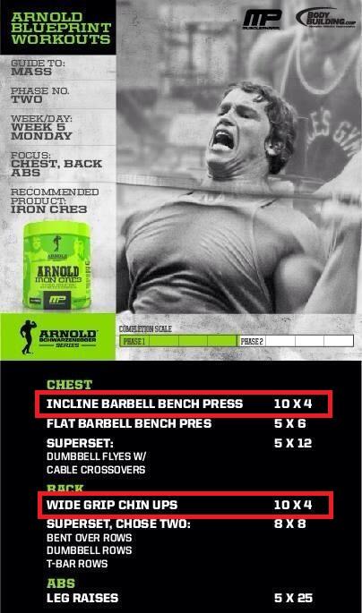 提升睪固酮水平。讓肌肉量亦一起提升! - Gymbeginner 健身入門