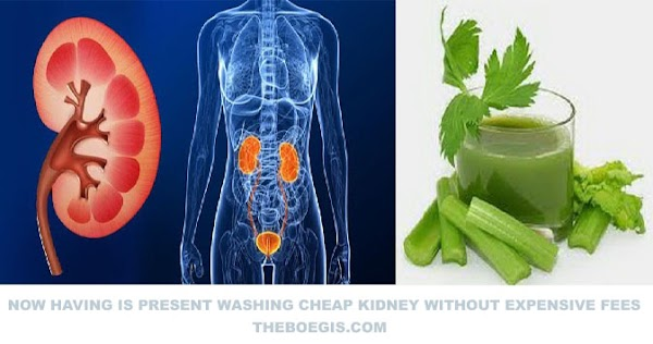 NOW HAVING IS PRESENT WASHING CHEAP KIDNEY WITHOUT EXPENSIVE FEES