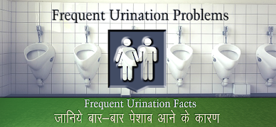 बार-बार पेशाब के कारण, Frequent Urination in Hindi, बार बार पेशाब आने का कारण क्या है?,  treatment of frequent urination in Hindi, लगातार पेशाब आना , Frequent Urination ka upchar, पेशाब का बार बार आना- घरेलू उपचार , Home Remedies For Frequent Urination, बार बार पेशाब आने के घरेलू उपचार , bar bar peshab ka ilaj in hindi, बार-बार पेशाब , बहुमूत्र , Frequent urination, मूत्र रोग ,Urinary disease