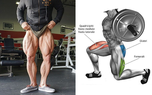 How to Get Bigger and Stronger Legs