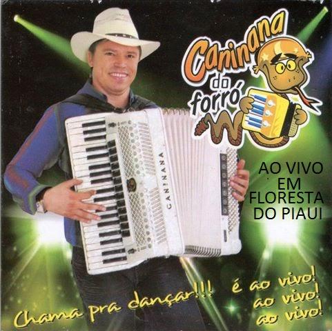 2010 CANINANA FORRO CD BAIXAR DO