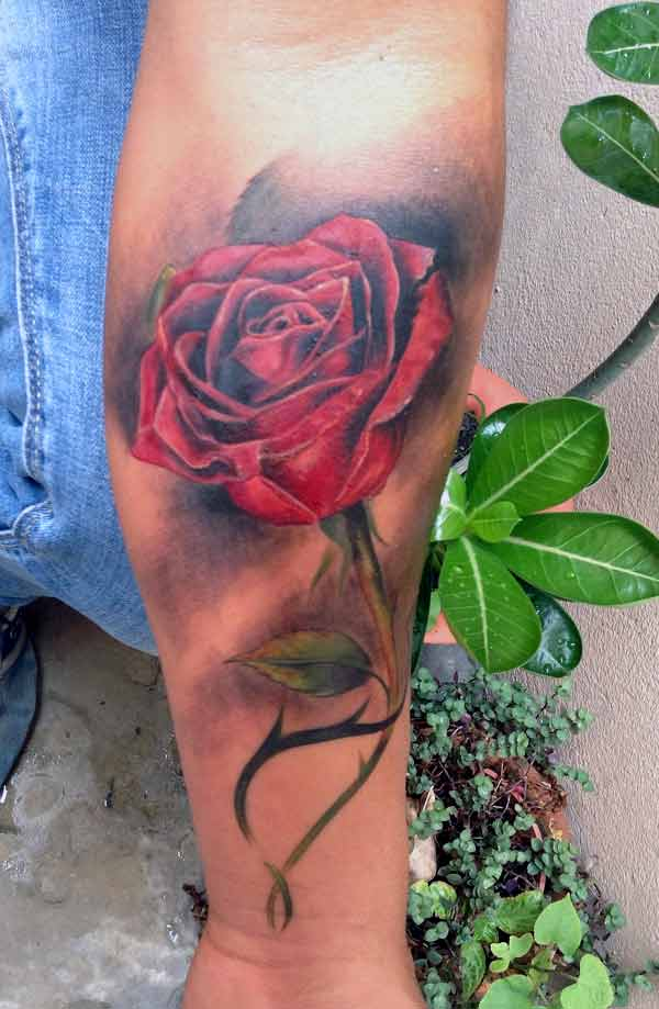 Tattoos design ideas 32 best and attractive rose flower for Tattooed single men