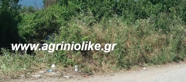 Αποτέλεσμα εικόνας για agriniolike αύλακας