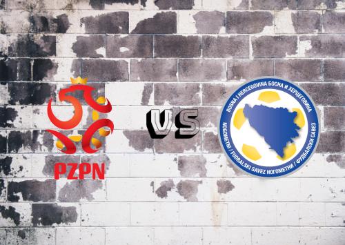 Polonia vs Bosnia-Herzegovina  Resumen