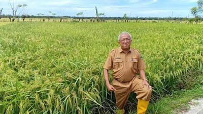 Tingkatkan Produktivitas, Distanhorbun Pessel Maksimalkan Pembinaan Petani