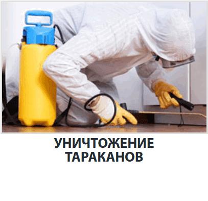 Способы и средства избавление от тараканов
