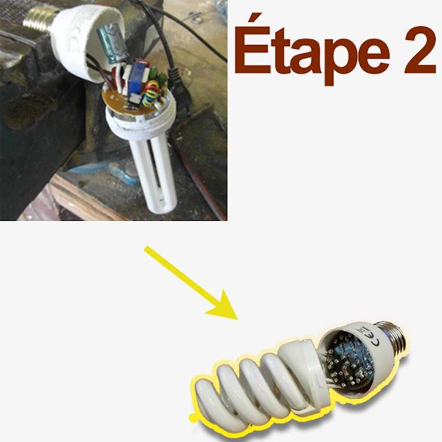 boîtier de lampes L'ampoule fluocompacte