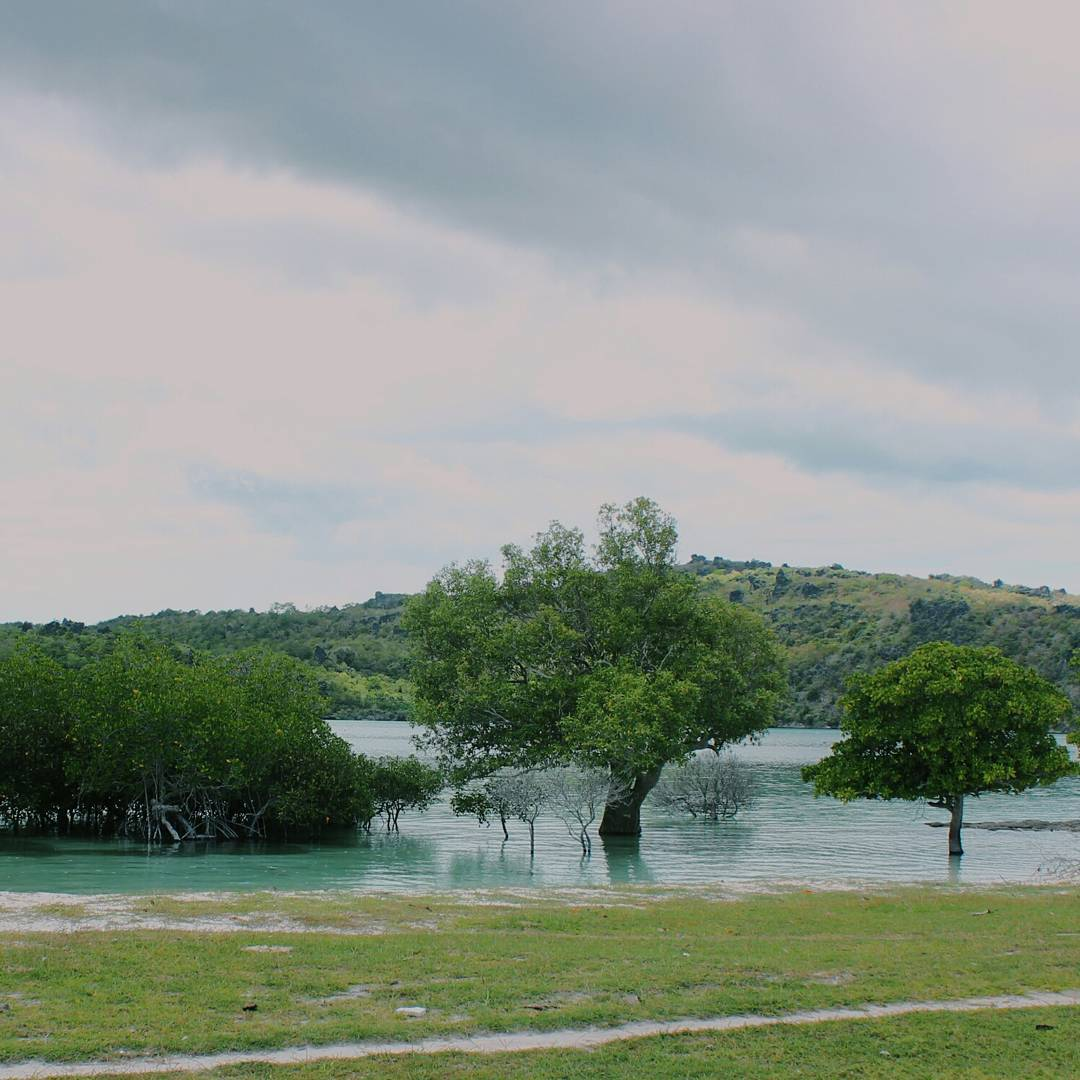 oeseli beach
