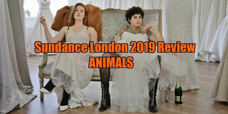 animals 2019 film review