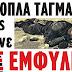 ΕΝΟΠΛΑ ΤΑΓΜΑΤΑ μας πάνε ΣΕ ΕΜΦΥΛΙΟ: Θέλουν να οδηγήσουν τους Έλληνες σε αιματηρή σύγκρουση;