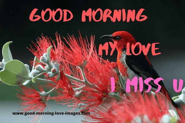 god morning my love i miss u