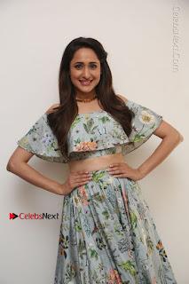 Actress Pragya Jaiswal Stills in Floral Dress at turodu Interview  0120.JPG