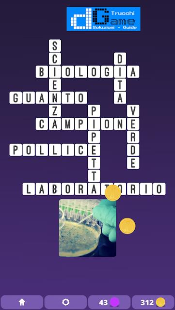 Soluzioni One Clue Crossword livello 10 schemi 14 (Cruciverba illustrato)  | Parole e foto