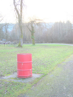 Photo of Trash Can by Linda G. Hatton