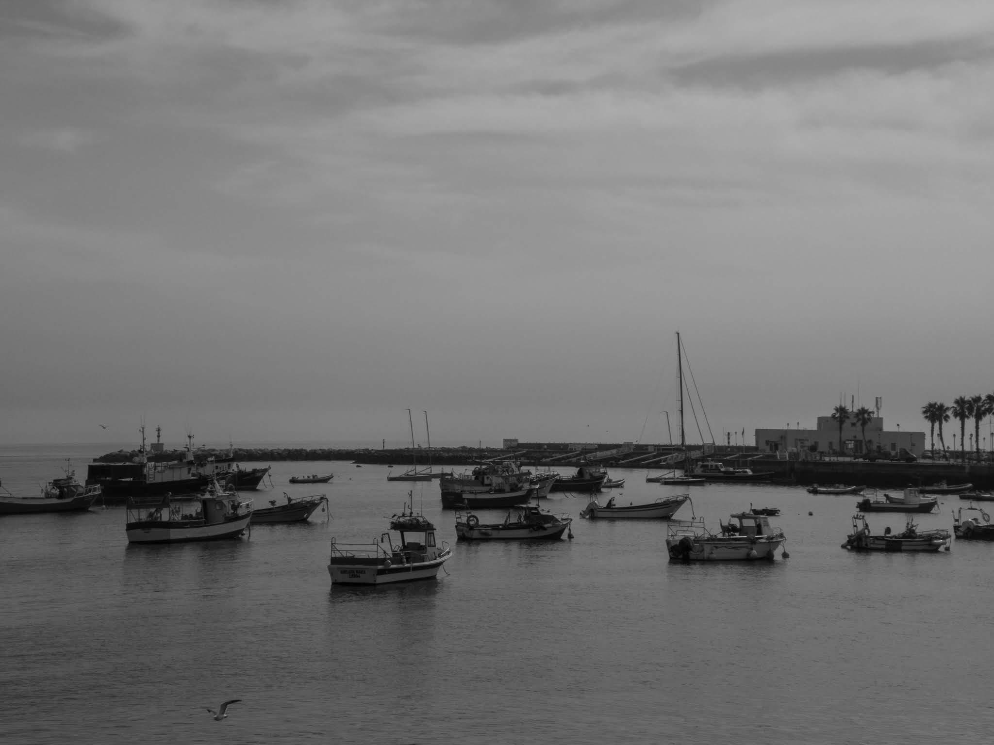 Black and white capture of boats in Cascais bay, Portugal.
