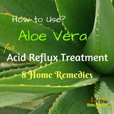 Aloe Vera For Acid Reflux, Aloe Vera And Acid Reflux, Home Remedies For Acid Reflux, How To Get Rid Of Acid Reflux, How To Get Relief From Acid Reflux, Acid Reflux Home Remedies, Acid Reflux Treatment, Treatment For Acid Reflux, How To Cure Acid Reflux, Acid Reflux Remedies, Relieve Acid Reflux, Acid Reflux Relief