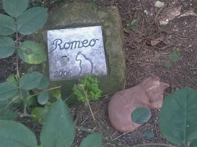cimitero acattolico tomba camilleri e Nerone Roma