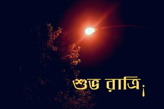best bengali good night images