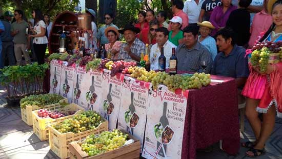 Viticultores de Tarija quieren exportar uva a Paraguay