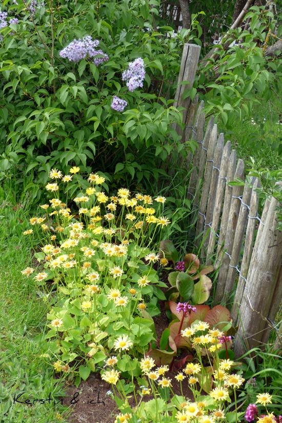 Garten Rundgang Bauerngarten Landhausgarten
