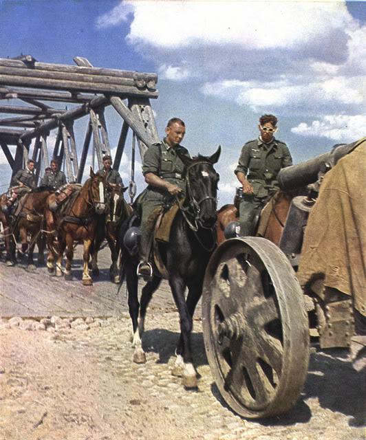 German horses hauled supplies, artillery, and other equipment worldwartwo.filminspector.com