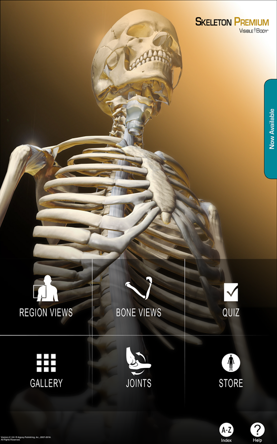 Li Ping Medical Library Cuhk Skeleton Premium App For Android