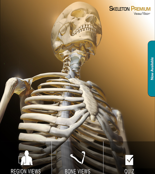Skeleton Premium App for Android