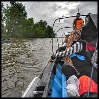 Kegiatan susur sungai sambil mengamati hutan bakau