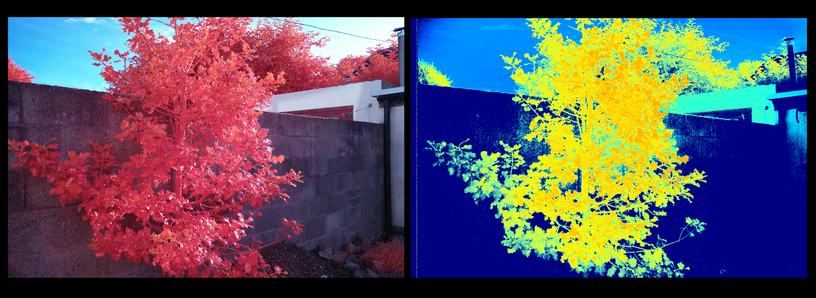 MuonRay: NDVI Vegetation Mapping Project with a NIR