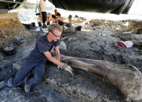 اقدم ديناصور في العالم Adratiklit Boulahfa