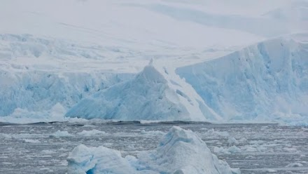 Footage captures moment 40m 'tower block' of ice splits from glacier