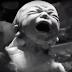 """""""COMA"""", la primer serie original de Getty Images hecha completamente de contenido del banco de imágenes"""