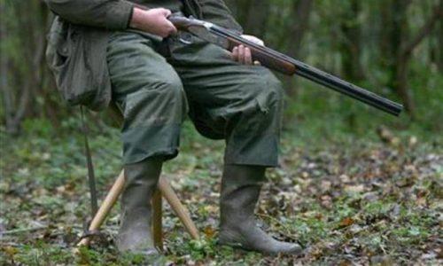 Χωρίς να διαθέτει θεωρημένη άδεια θήρας για την τρέχουσα κυνηγετική περίοδο συνελήφθη ένα άτομο από κλιμάκιο της Ομοσπονδιακής Θηροφυλακής στην ΠΕ Θεσπρωτίας.