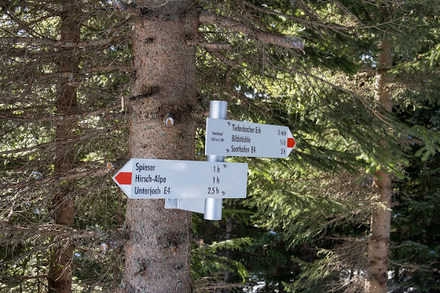 Schneeschuhtour tiefenbacher eck bad hindelang allgäu 13